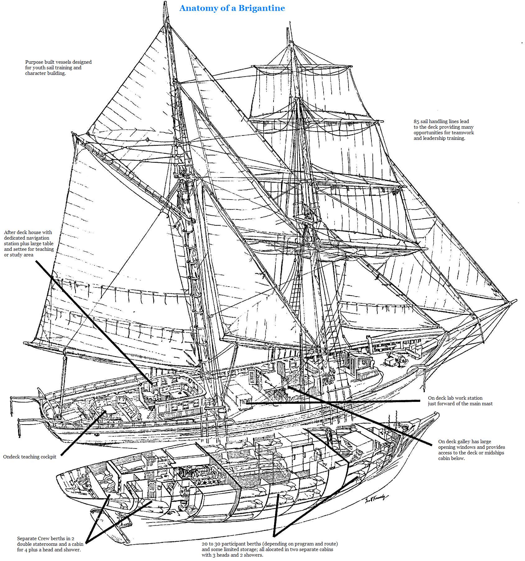 Sail To Catalina Island On A Tall Ship