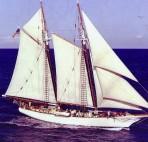 Tall Ship Bill of Rights
